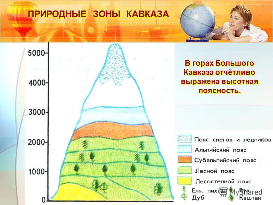 ПРИРОДНЫЕ ЗОНЫ КАВКАЗА В горах Большого Кавказа отчётливо выражена высотная поясность. В горах Большого Кавказа отчётливо выражена высотная поясность.