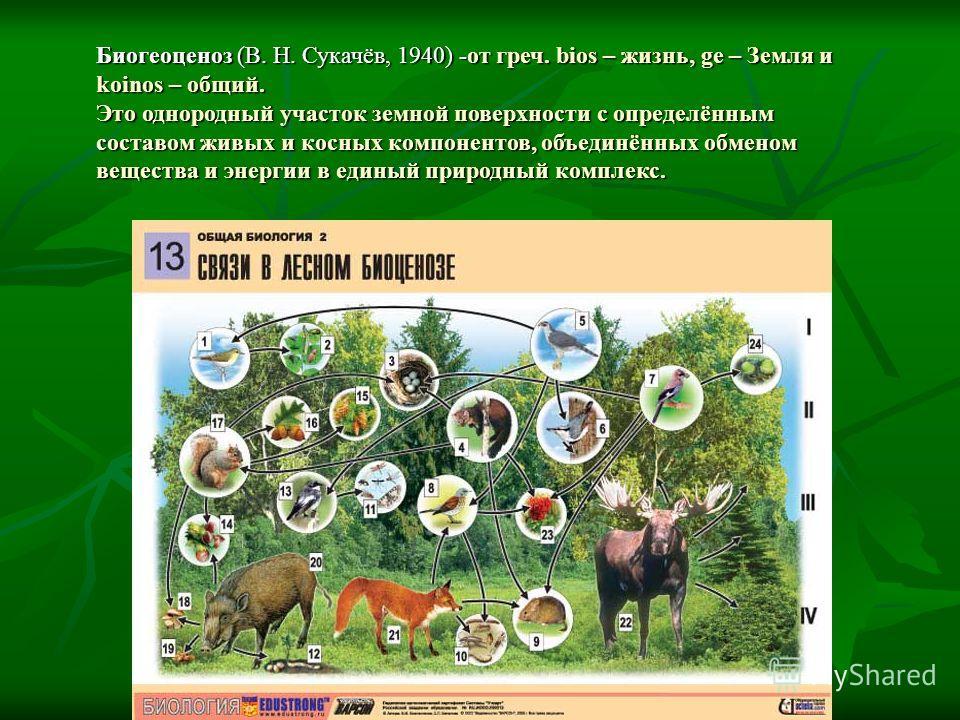 Биогеоценоз (В. Н. Сукачёв, 1940) -от греч. bios – жизнь, ge – Земля и koinos – общий. Это однородный участок земной поверхности с определённым составом живых и косных компонентов, объединённых обменом вещества и энергии в единый природный комплекс.