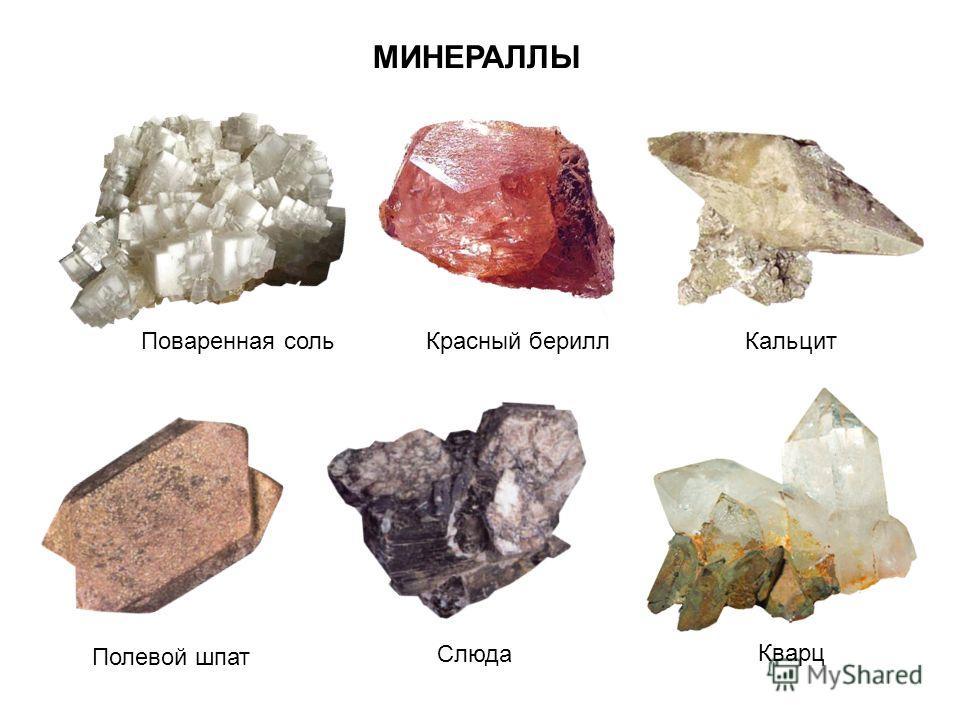 Поваренная соль Кварц Полевой шпат Слюда КальцитКрасный берилл МИНЕРАЛЛЫ