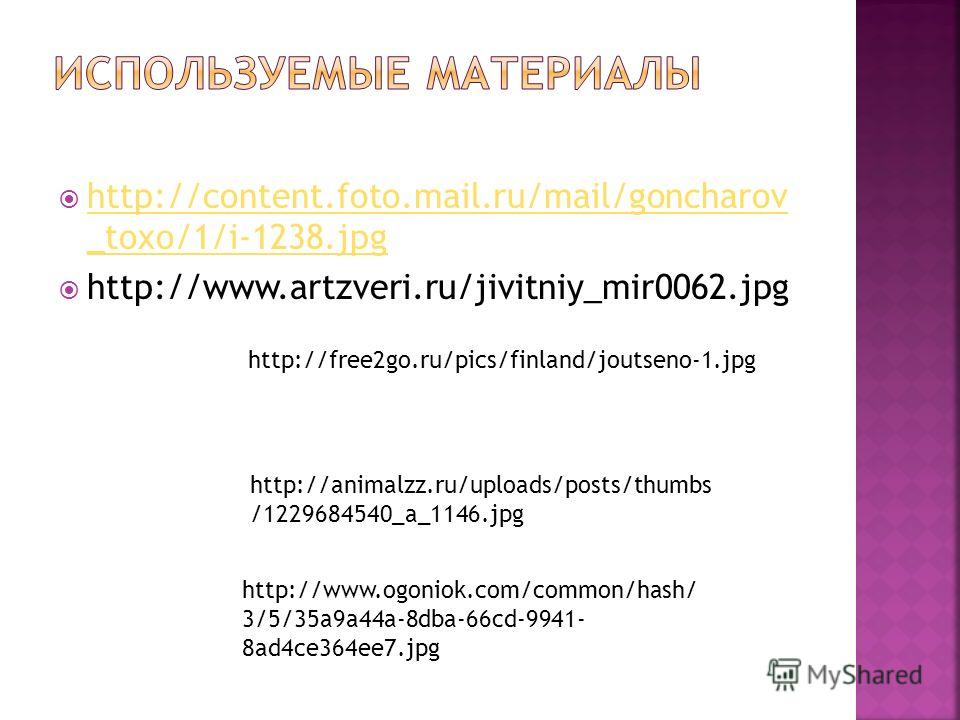http://content.foto.mail.ru/mail/goncharov _toxo/1/i-1238.jpg http://content.foto.mail.ru/mail/goncharov _toxo/1/i-1238.jpg http://www.artzveri.ru/jivitniy_mir0062.jpg http://free2go.ru/pics/finland/joutseno-1.jpg http://animalzz.ru/uploads/posts/thu