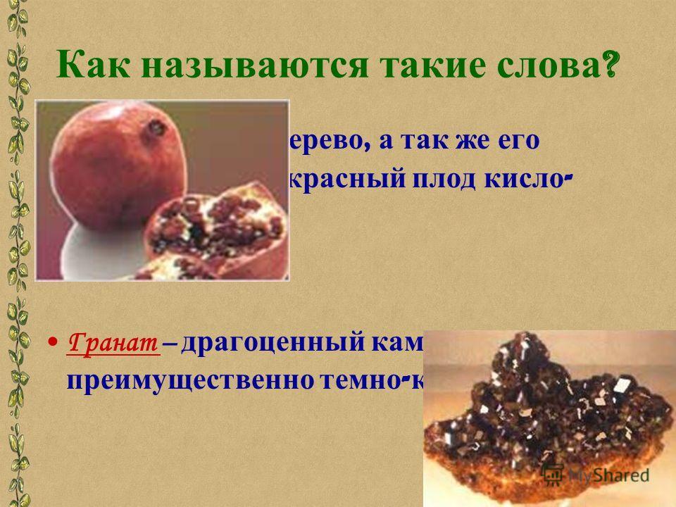 Как называются такие слова ? Гранат - южное дерево, а так же его круглый темно - красный плод кисло - сладкого вкуса. Гранат – драгоценный камень, преимущественно темно - красного цвета