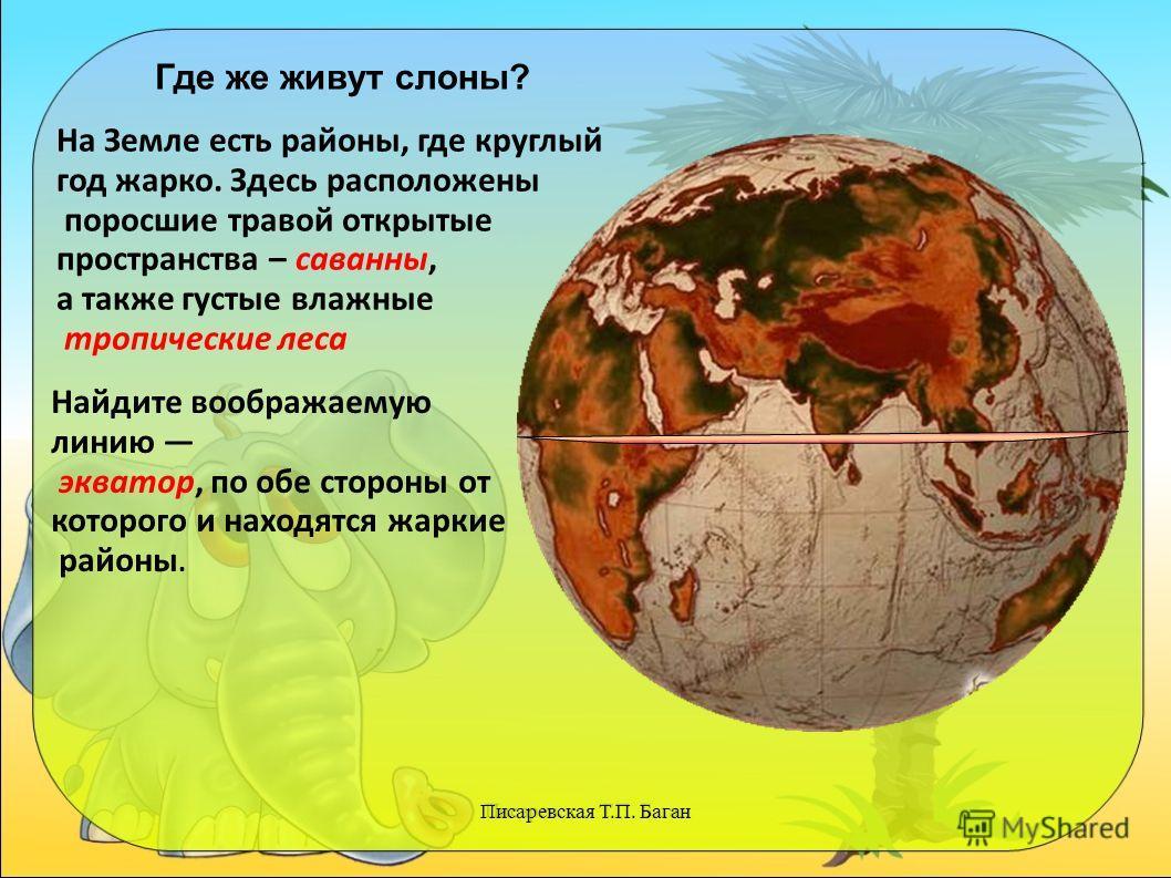 Писаревская Т.П. Баган Где же живут слоны? На Земле есть районы, где круглый год жарко. Здесь расположены поросшие травой открытые пространства – саванны, а также густые влажные тропические леса Найдите воображаемую линию экватор, по обе стороны от к