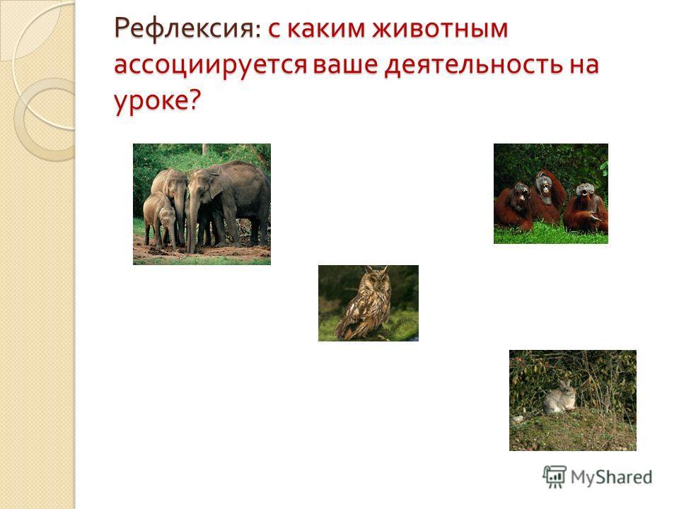 Рефлексия : с каким животным ассоциируется ваше деятельность на уроке ?