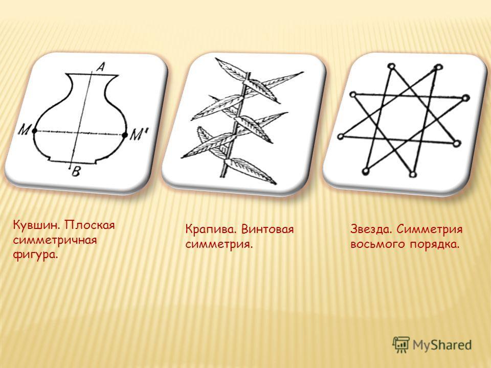 Кувшин. Плоская симметричная фигура. Крапива. Винтовая симметрия. Звезда. Симметрия восьмого порядка.