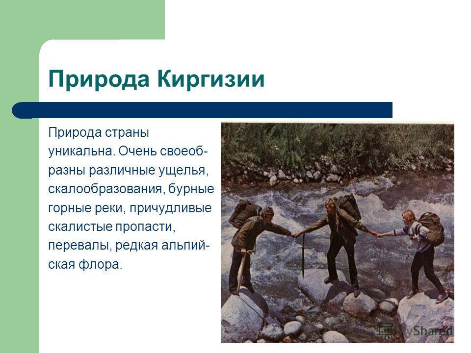 Природа Киргизии Природа страны уникальна. Очень своеоб- разны различные ущелья, скалообразования, бурные горные реки, причудливые скалистые пропасти, перевалы, редкая альпий- ская флора.