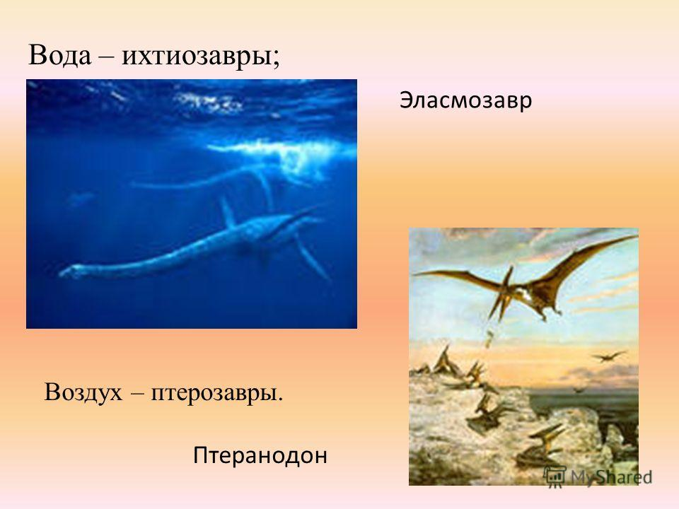 Вода – ихтиозавры; Эласмозавр Воздух – птерозавры. Птеранодон