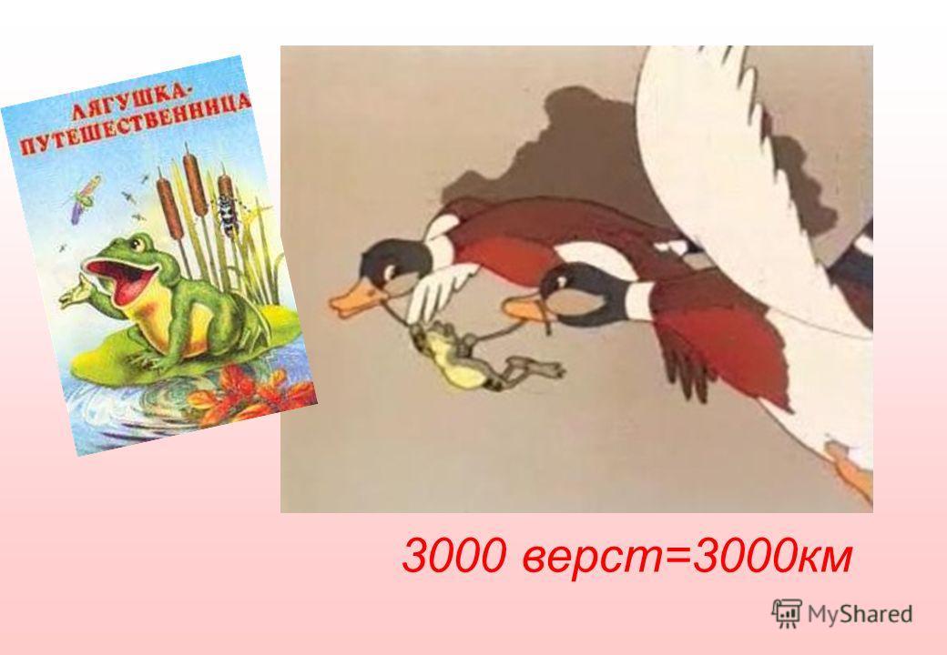 3000 верст=3000км