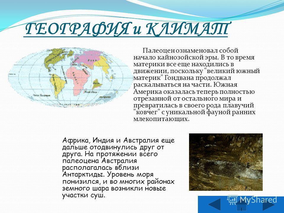 ГЕОГРАФИЯ и КЛИМАТ Палеоцен ознаменовал собой начало кайнозойской эры. В то время материки все еще находились в движении, поскольку