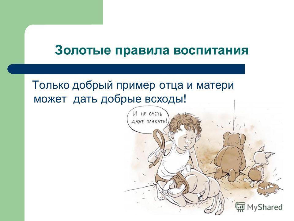 Золотые правила воспитания Только добрый пример отца и матери может дать добрые всходы!