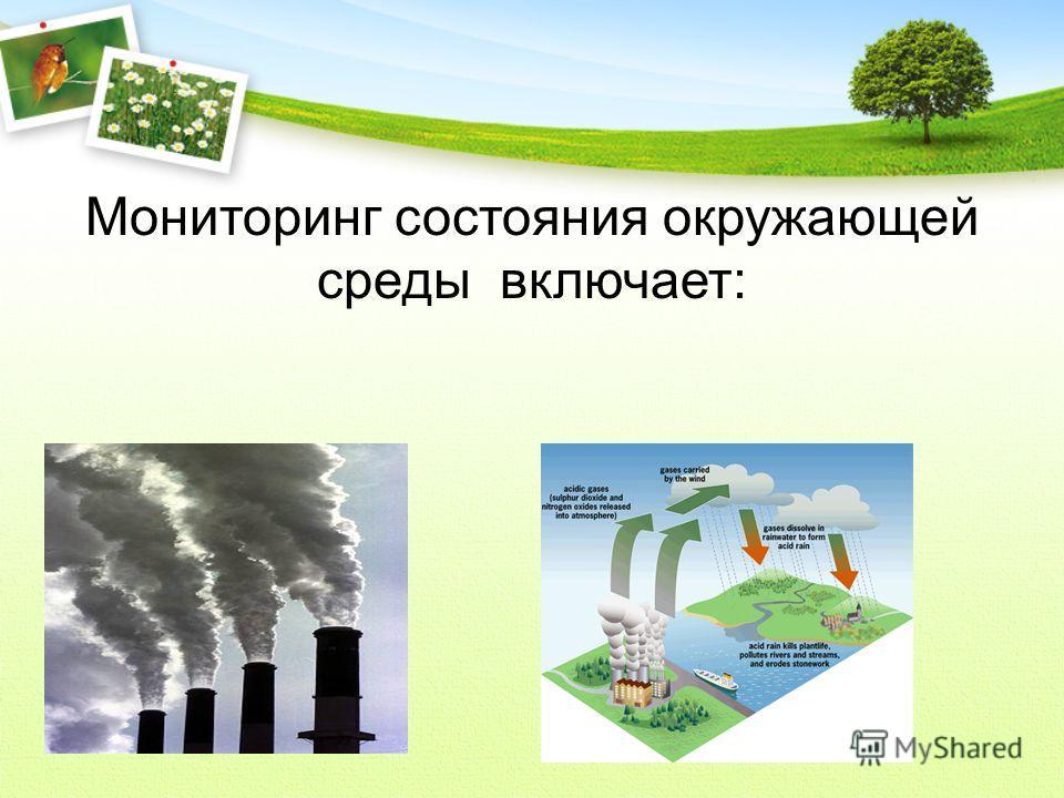 Мониторинг состояния окружающей среды включает: