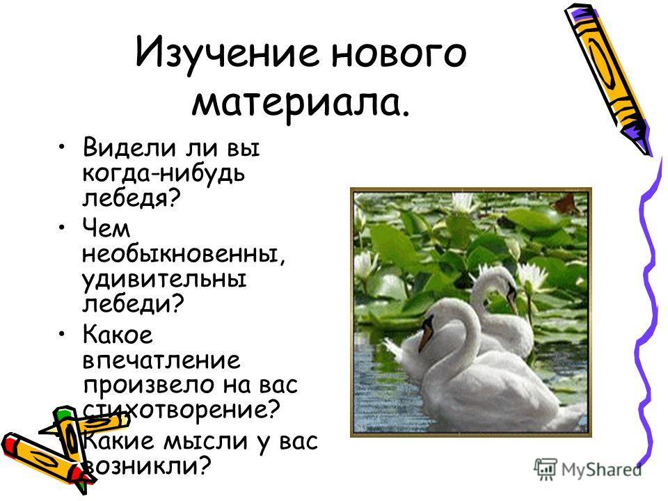 Изучение нового материала. Видели ли вы когда-нибудь лебедя? Чем необыкновенны, удивительны лебеди? Какое впечатление произвело на вас стихотворение? Какие мысли у вас возникли?