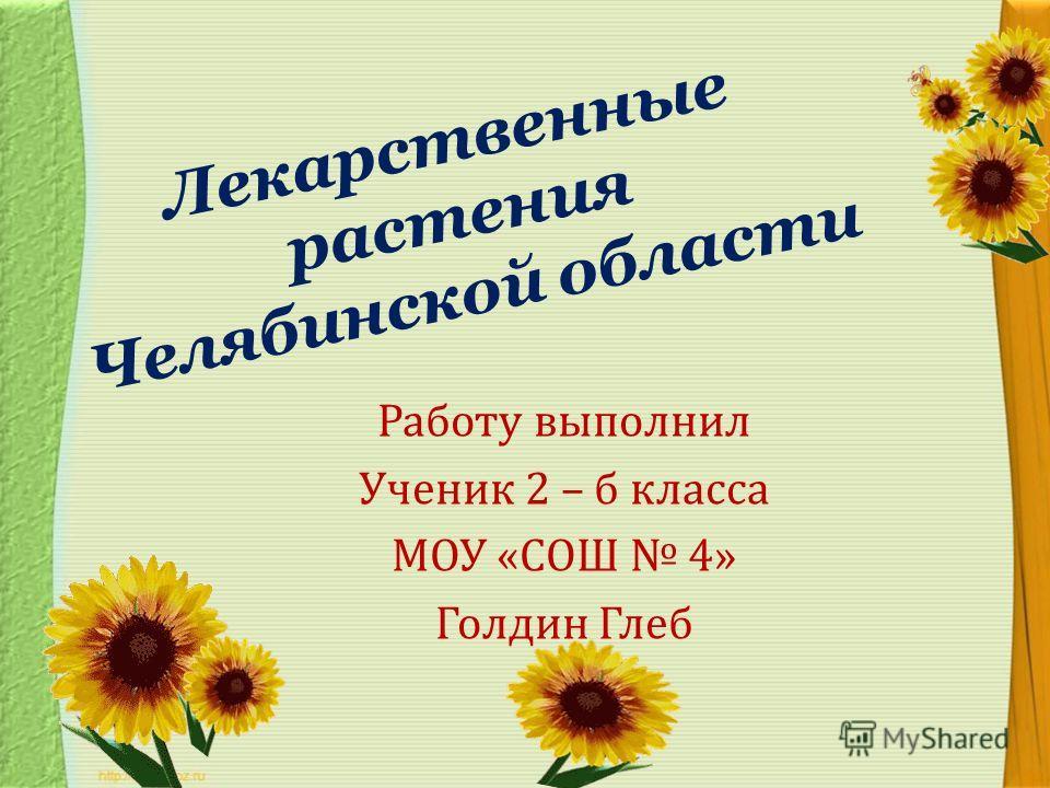 Лекарственные растения челябинской