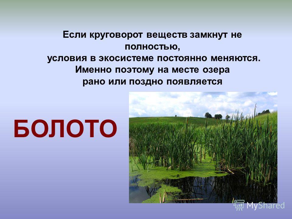 Экосистема озера 3 класс решебник