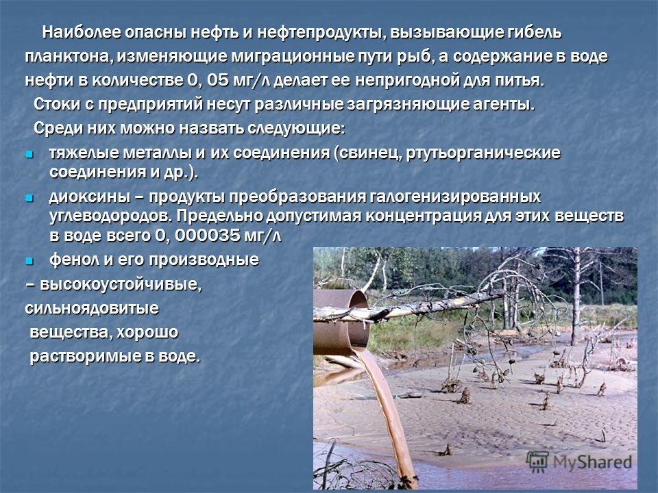 Наиболее опасны нефть и нефтепродукты, вызывающие гибель Наиболее опасны нефть и нефтепродукты, вызывающие гибель планктона, изменяющие миграционные пути рыб, а содержание в воде нефти в количестве 0, 05 мг/л делает ее непригодной для питья. Стоки с