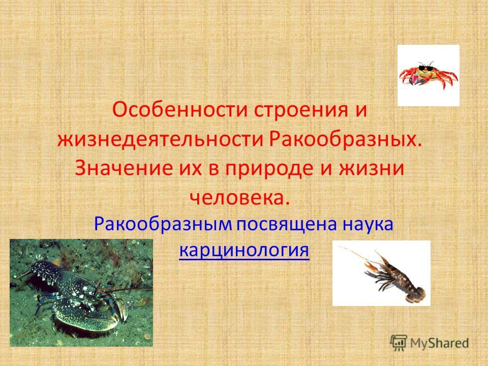 Особенности строения и жизнедеятельности Ракообразных. Значение их в природе и жизни человека. Ракообразным посвящена наука карцинология карцинология
