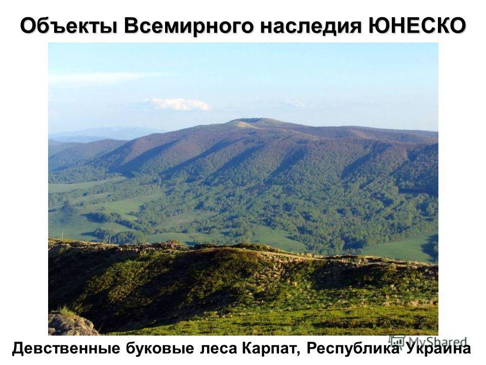 Девственные буковые леса Карпат, Республика Украина Объекты Всемирного наследия ЮНЕСКО