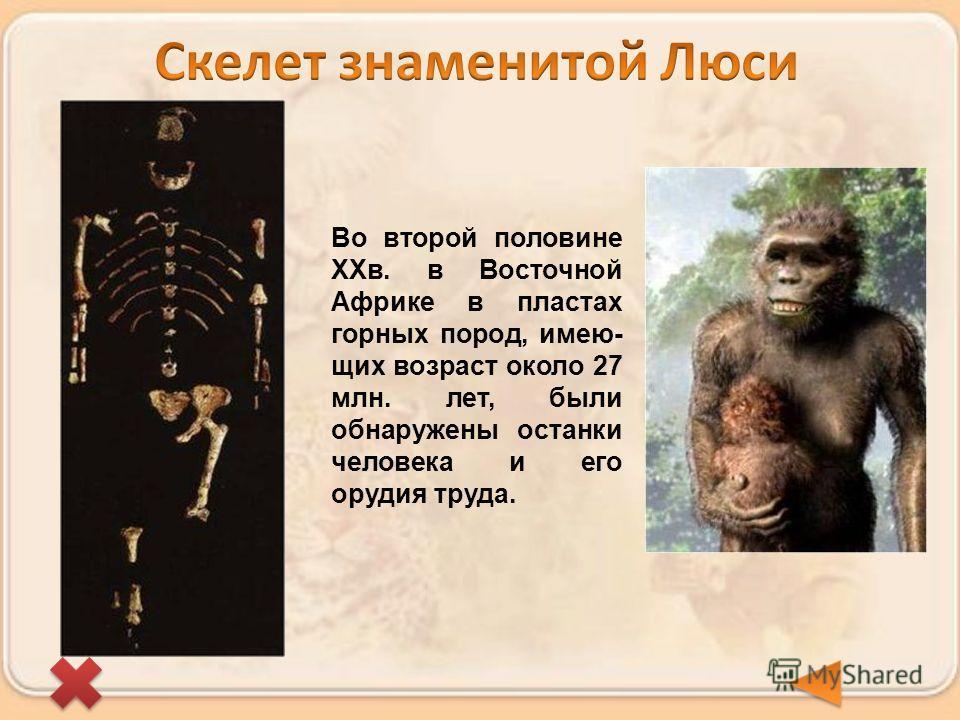 Во второй половине ХХв. в Восточной Африке в пластах горных пород, имею- щих возраст около 27 млн. лет, были обнаружены останки человека и его орудия труда.