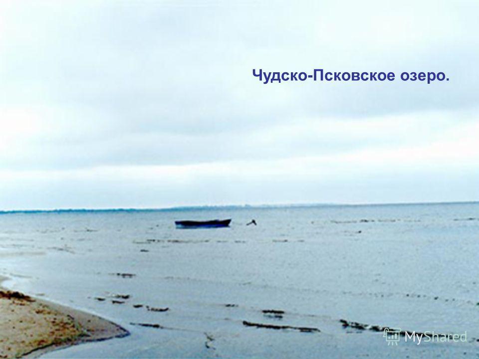 Чудско-Псковское озеро.