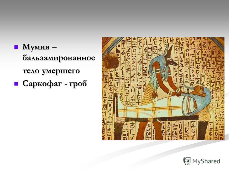 Мумия – бальзамированное Мумия – бальзамированное тело умершего тело умершего Саркофаг - гроб Саркофаг - гроб