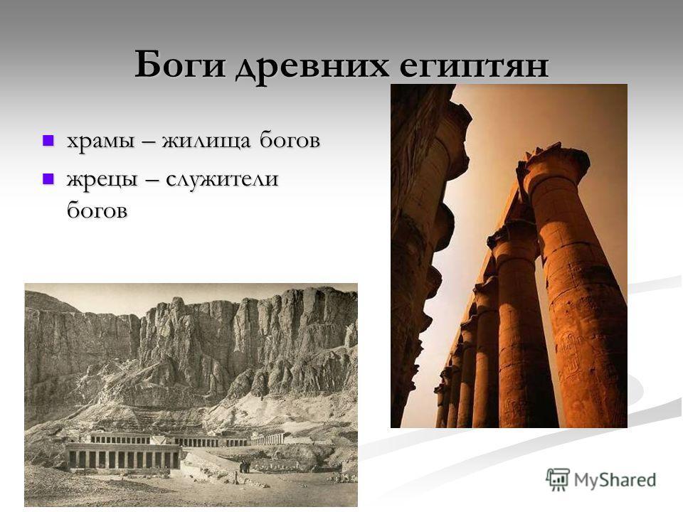 Боги древних египтян храмы – жилища богов храмы – жилища богов жрецы – служители богов жрецы – служители богов