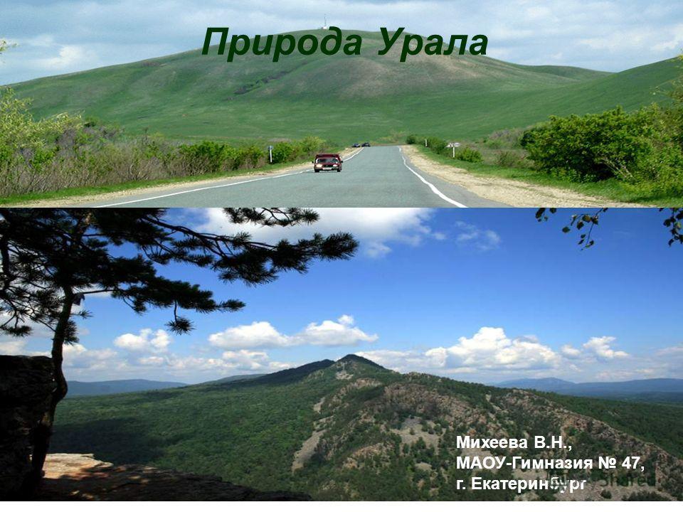 Природа Урала Михеева В.Н., МАОУ-Гимназия 47, г. Екатеринбург