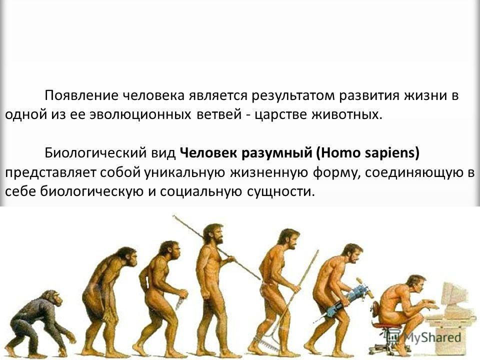 Почему человек считается биосоциальным видом