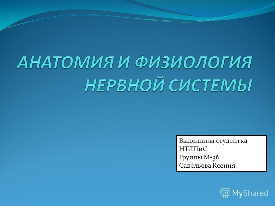 Выполнила студентка НТЛПиС Группы М-36 Савельева Ксения.