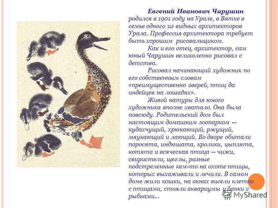 Евгений Иванович Чарушин родился в 1901 году на Урале, в Вятке в семье одного из видных архитекторов Урала. Профессия архитектора требует быть хорошим рисовальщиком. Как и его отец, архитектор, сам юный Чарушин великолепно рисовал с детства. Рисовал