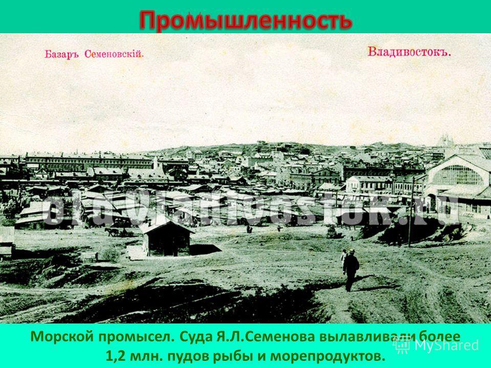 Морской промысел. Суда Я.Л.Семенова вылавливали более 1,2 млн. пудов рыбы и морепродуктов.