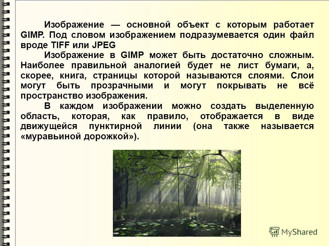 Изображение основной объект с которым работает GIMP. Под словом изображением подразумевается один файл вроде TIFF или JPEG Изображение в GIMP может быть достаточно сложным. Наиболее правильной аналогией будет не лист бумаги, а, скорее, книга, страниц
