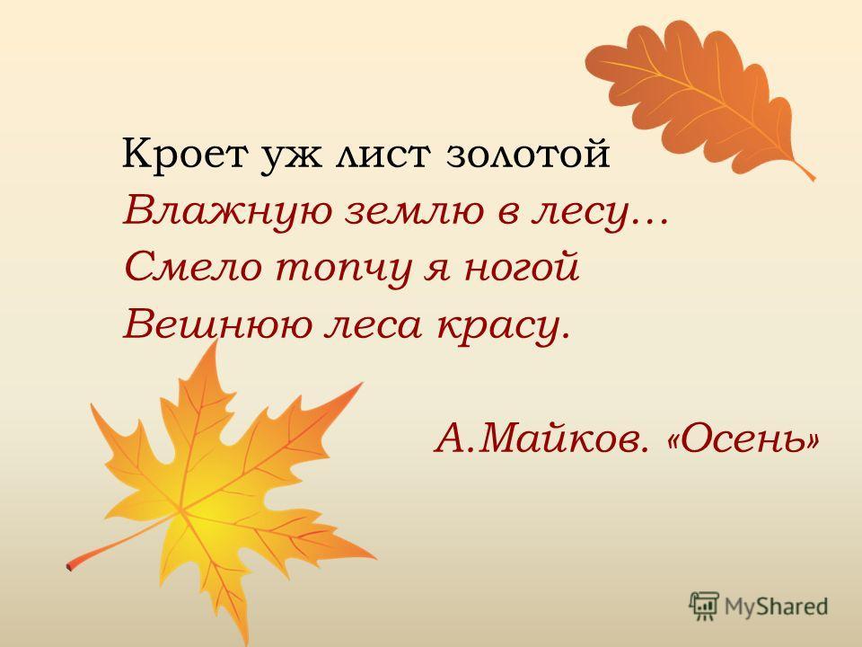 Кроет уж лист золотой Влажную землю в лесу… Смело топчу я ногой Вешнюю леса красу. А.Майков. «Осень»
