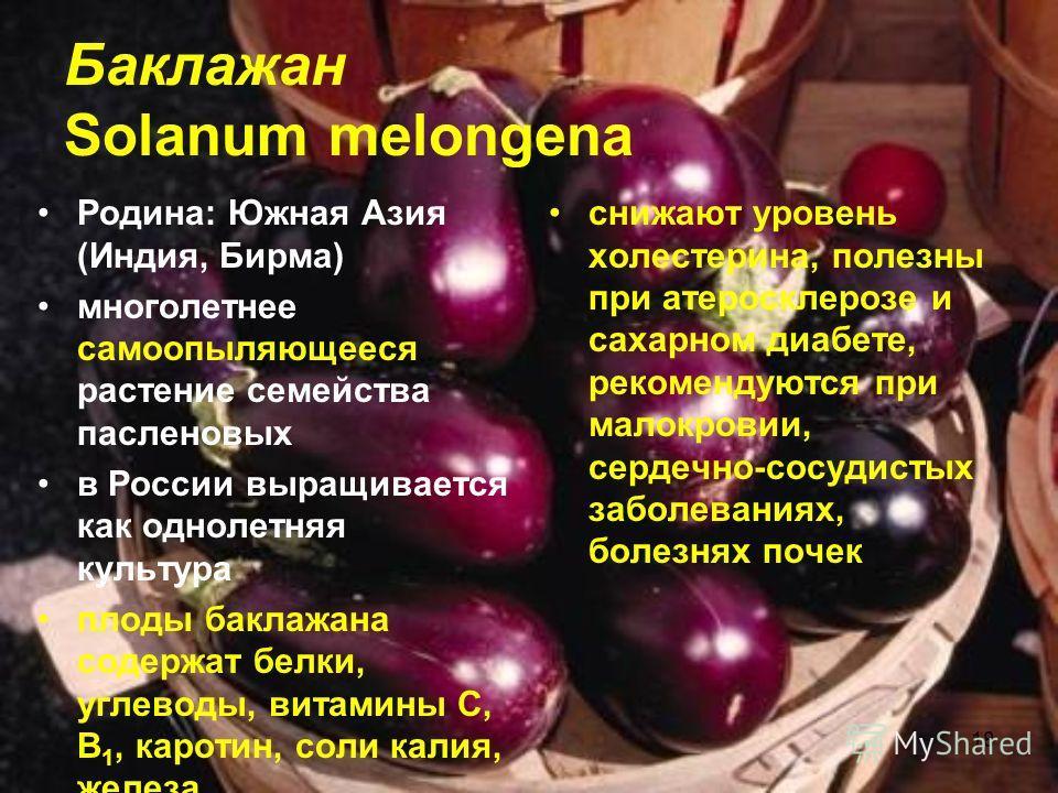18 Баклажан Solanum melongena Родина: Южная Азия (Индия, Бирма) многолетнее самоопыляющееся растение семейства пасленовых в России выращивается как однолетняя культура плоды баклажана содержат белки, углеводы, витамины C, B 1, каротин, соли калия, же