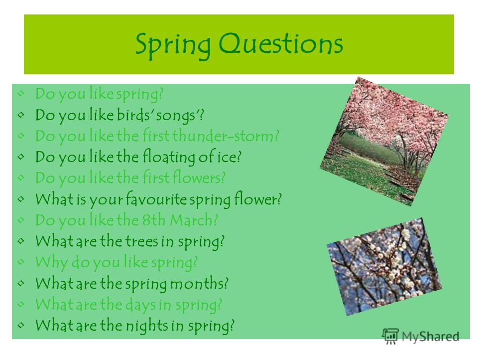 Spring Questions Do you like spring? Do you like birds' songs'? Do you like the first thunder-storm? Do you like the floating of ice? Do you like the first flowers? What is your favourite spring flower? Do you like the 8th March? What are the trees i