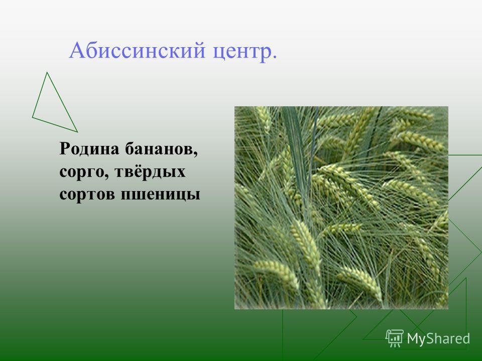 Основы селекции растений животных