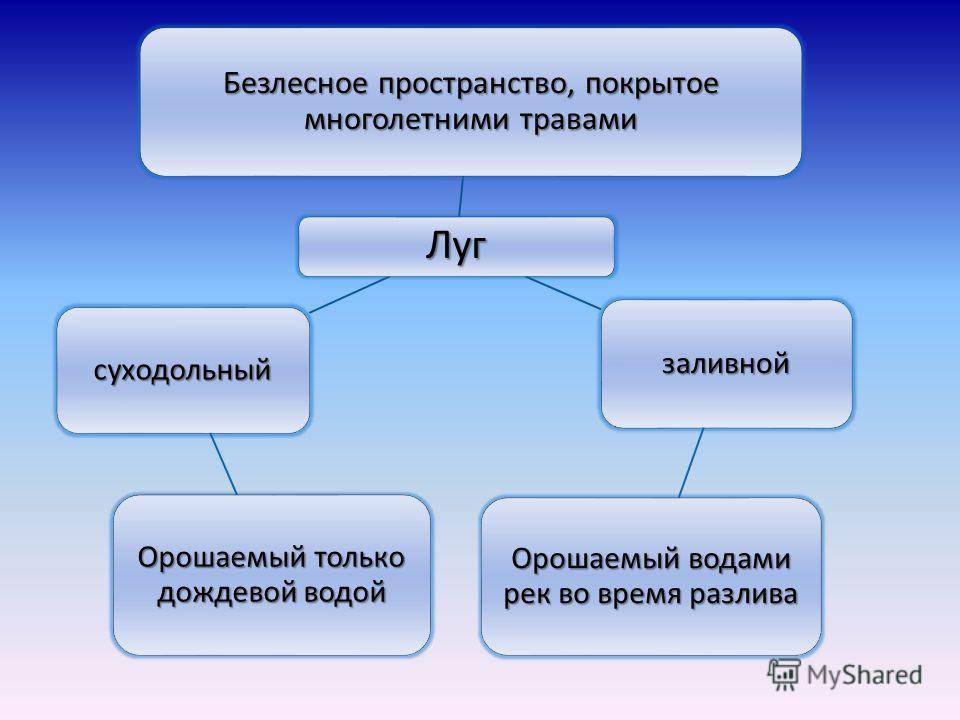 Подготовила: ученица 4 «д» класса МОУ СОШ 30 Дьякова Элина