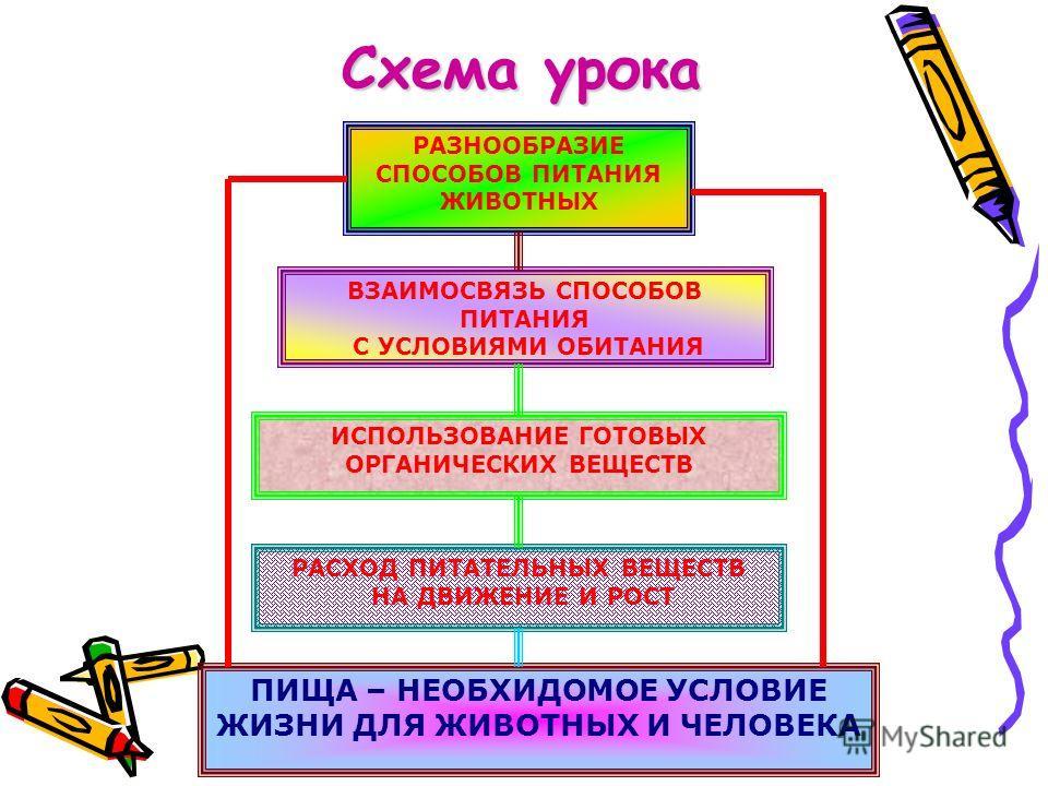 Схема урока РАЗНООБРАЗИЕ СПОСОБОВ ПИТАНИЯ ЖИВОТНЫХ ВЗАИМОСВЯЗЬ СПОСОБОВ ПИТАНИЯ С УСЛОВИЯМИ ОБИТАНИЯ ИСПОЛЬЗОВАНИЕ ГОТОВЫХ ОРГАНИЧЕСКИХ ВЕЩЕСТВ РАСХОД ПИТАТЕЛЬНЫХ ВЕЩЕСТВ НА ДВИЖЕНИЕ И РОСТ ПИЩА – НЕОБХИДОМОЕ УСЛОВИЕ ЖИЗНИ ДЛЯ ЖИВОТНЫХ И ЧЕЛОВЕКА