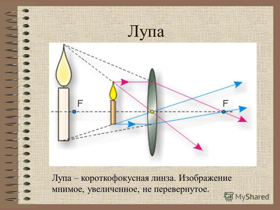 Лупа Лупа – короткофокусная линза. Изображение мнимое, увеличенное, не перевернутое.