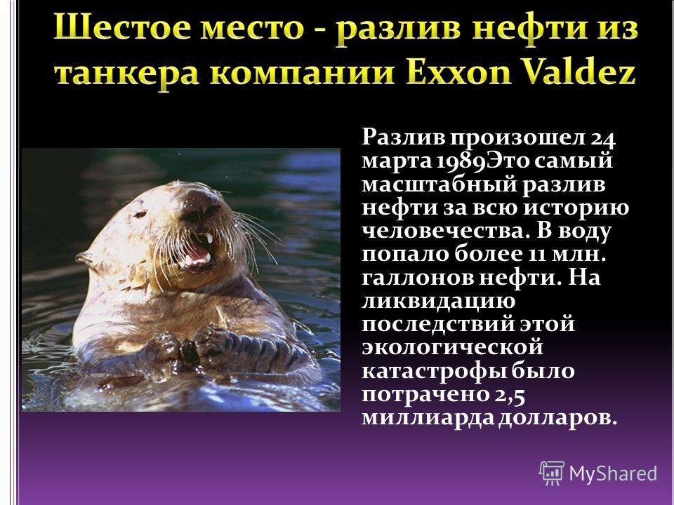 Разлив произошел 24 марта 1989Это самый масштабный разлив нефти за всю историю человечества. В воду попало более 11 млн. галлонов нефти. На ликвидацию последствий этой экологической катастрофы было потрачено 2,5 миллиарда долларов.