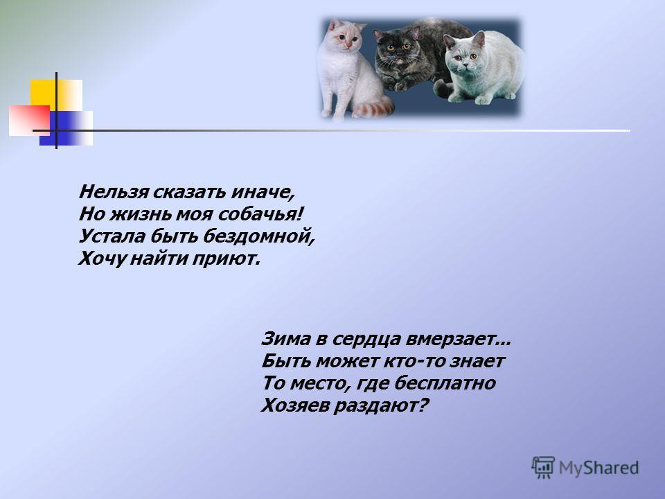 Нельзя сказать иначе, Но жизнь моя собачья! Устала быть бездомной, Хочу найти приют. Зима в сердца вмерзает... Быть может кто-то знает То место, где бесплатно Хозяев раздают?