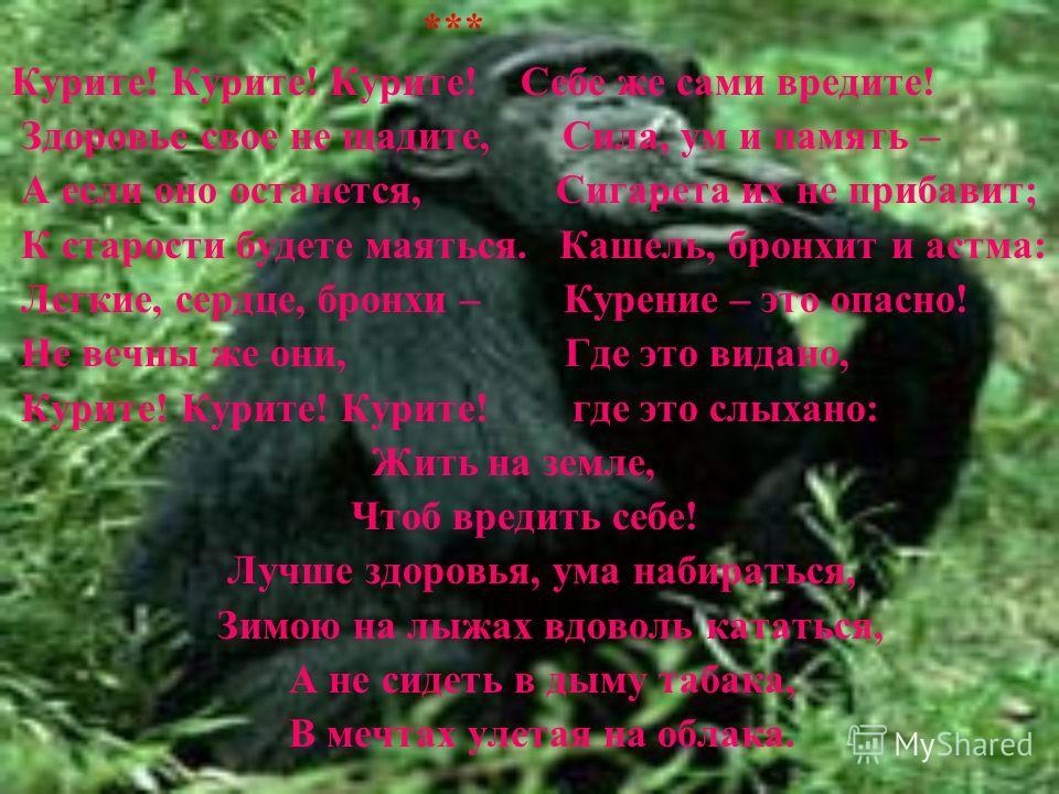 *** Курите! Курите! Курите! Себе же сами вредите! Здоровье свое не щадите, Сила, ум и память – А если оно останется, Сигарета их не прибавит; К старости будете маяться. Кашель, бронхит и астма: Легкие, сердце, бронхи – Курение – это опасно! Не вечны
