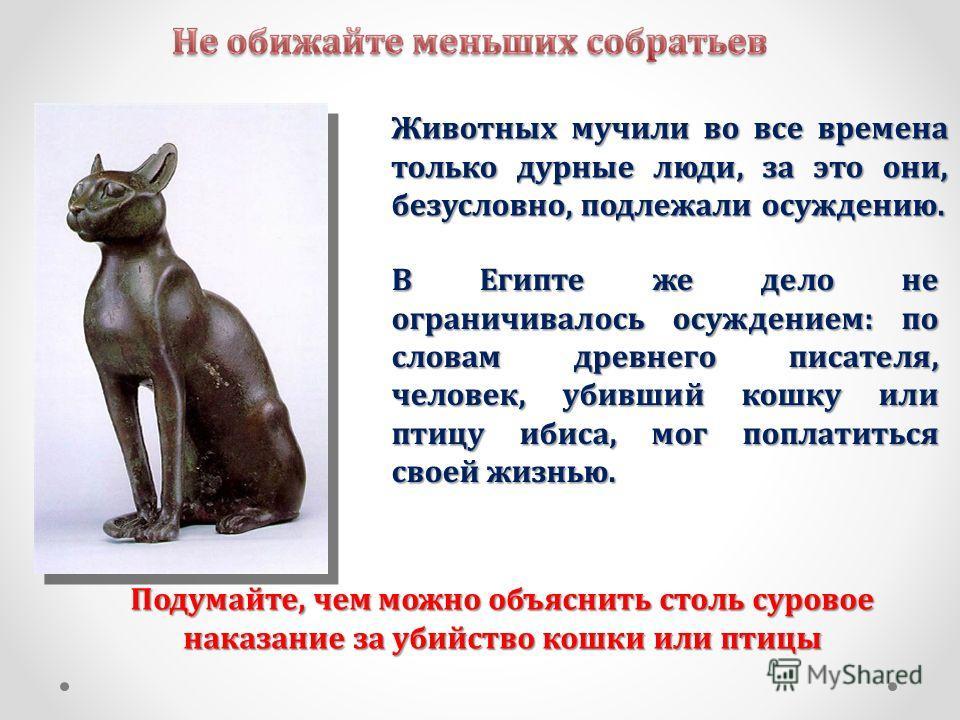 Животных мучили во все времена только дурные люди, за это они, безусловно, подлежали осуждению. Подумайте, чем можно объяснить столь суровое наказание за убийство кошки или птицы В Египте же дело не ограничивалось осуждением: по словам древнего писат