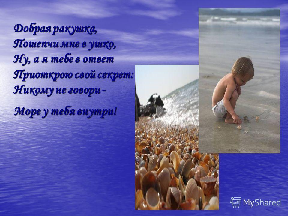 Добрая ракушка, Пошепчи мне в ушко, Ну, а я тебе в ответ Приоткрою свой секрет: Никому не говори - Море у тебя внутри!