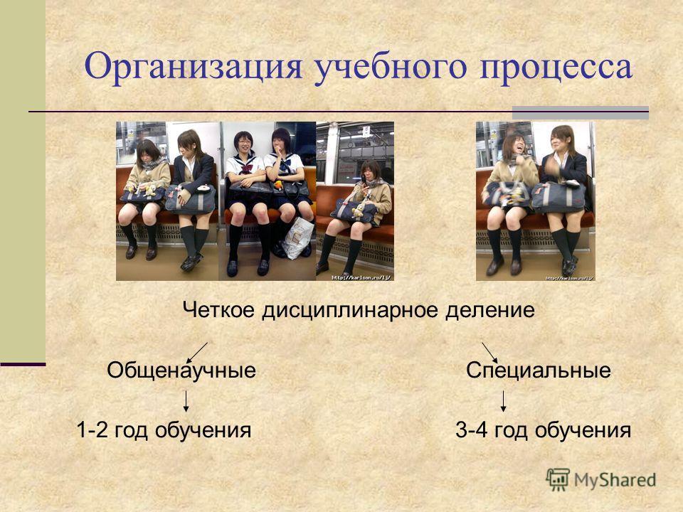 Организация учебного процесса Четкое дисциплинарное деление Общенаучные Специальные 1-2 год обучения 3-4 год обучения