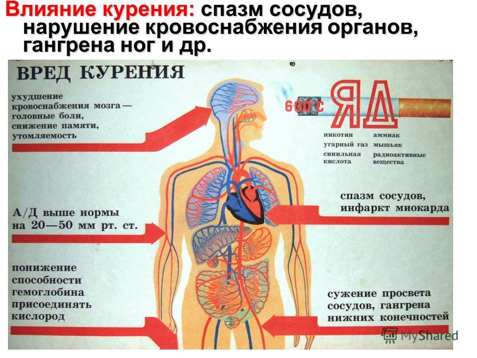 Влияние курения: спазм сосудов, нарушение кровоснабжения органов, гангрена ног и др.