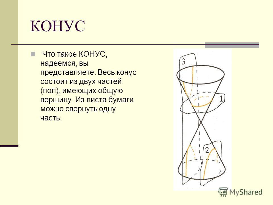 КОНУС Что такое КОНУС, надеемся, вы представляете. Весь конус состоит из двух частей (пол), имеющих общую вершину. Из листа бумаги можно свернуть одну часть.