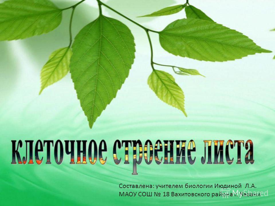 Составлена: учителем биологии Июдиной Л.А. МАОУ СОШ 18 Вахитовского района г. Казани