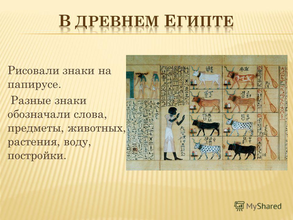 Рисовали знаки на папирусе. Разные знаки обозначали слова, предметы, животных, растения, воду, постройки.