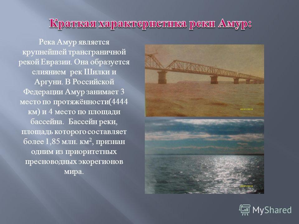 Река Амур является крупнейшей трансграничной рекой Евразии. Она образуется слиянием рек Шилки и Аргуни. В Российской Федерации Амур занимает 3 место по протяжённости (4444 км ) и 4 место по площади бассейна. Бассейн реки, площадь которого составляет