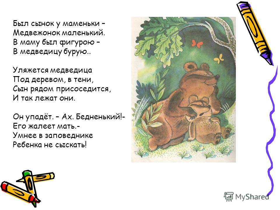 Был сынок у маменьки – Медвежонок маленький. В маму был фигурою – В медведицу бурую.. Уляжется медведица Под деревом, в тени, Сын рядом присоседится, И так лежат они. Он упадёт. – Ах. Бедненький!- Его жалеет мать.- Умнее в заповеднике Ребенка не сыск