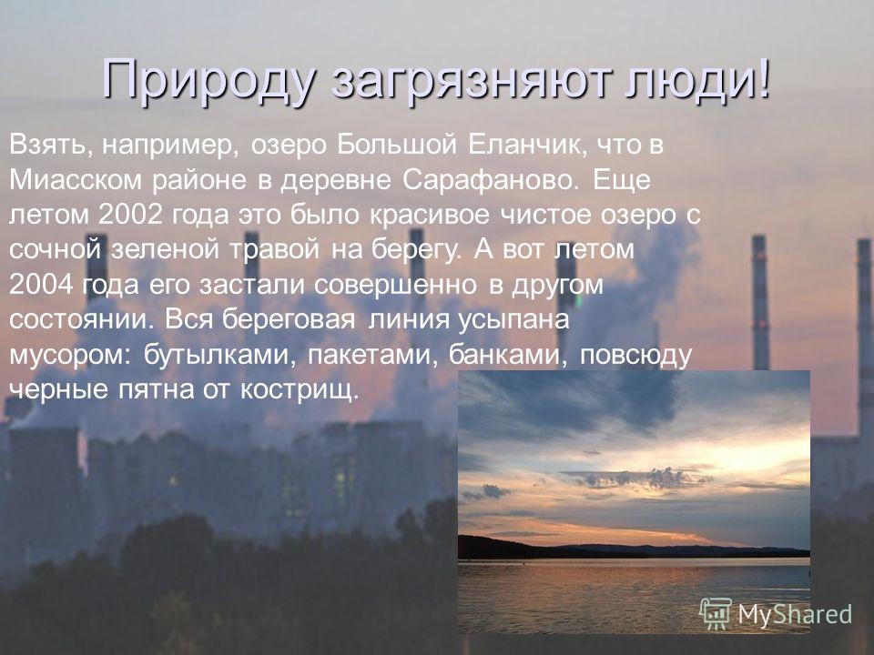 Природу загрязняют люди! Взять, например, озеро Большой Еланчик, что в Миасском районе в деревне Сарафаново. Еще летом 2002 года это было красивое чистое озеро с сочной зеленой травой на берегу. А вот летом 2004 года его застали совершенно в другом с